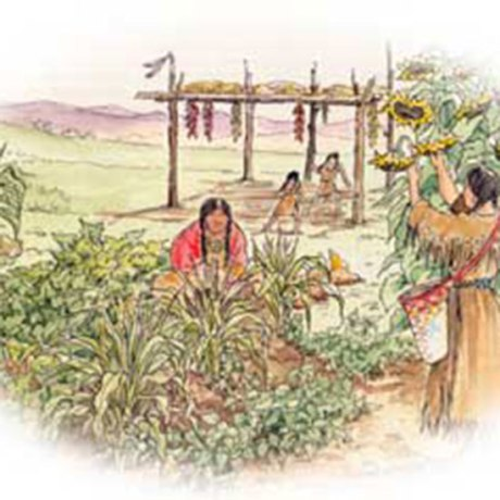Native-American jpg.jpg